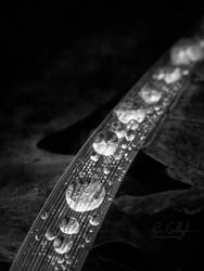 The Morning Melt by ryangallagherart