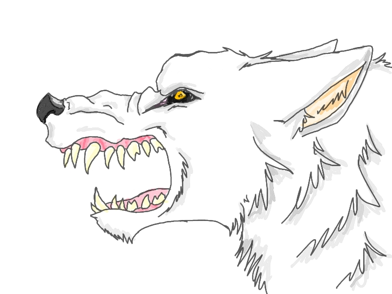 Angry Wolf by VivaLaNiccals on DeviantArt