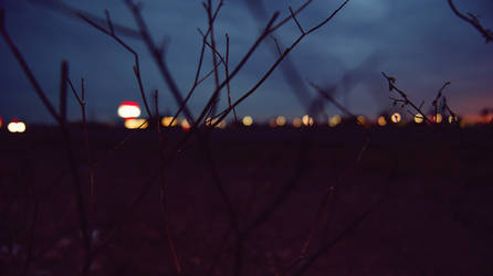 Night by alekswasheree