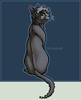 Character Sheet - Silvercloud