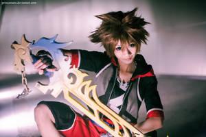 Kingdom Hearts 3D: Sora
