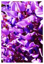 Pretty Purple Snapdragons by Iguanadongreen