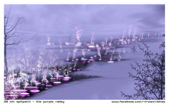 Purplevalley 30 min. speedpaint