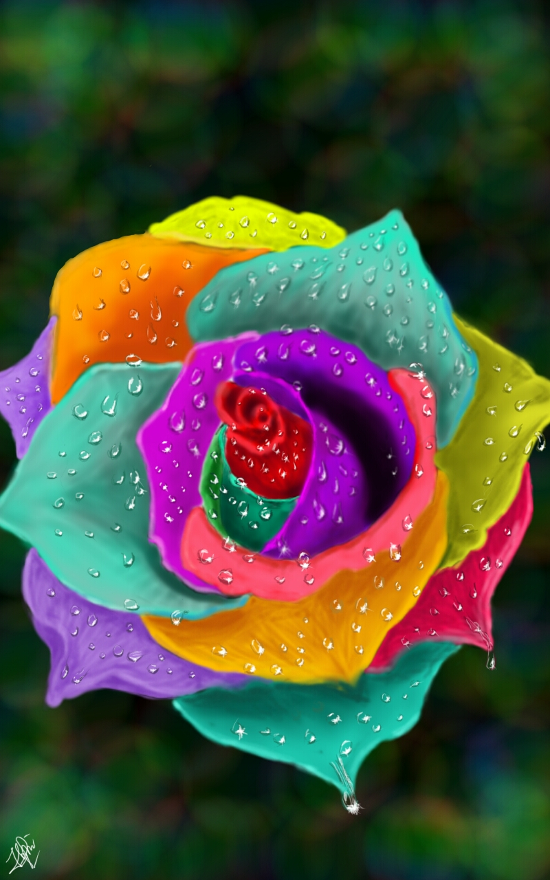 Rainbow rose by enkoshi on deviantart for How much are rainbow roses