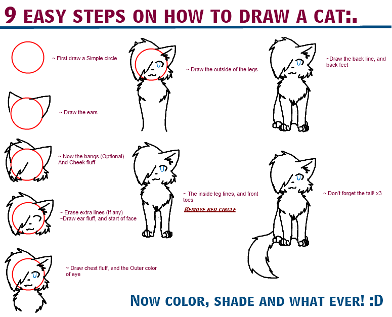 How to draw a cat by starlitnightskies