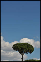 Tree by AlexDeeJay