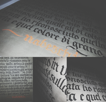 Pablo Neruda: Tus manos (2/3) Poems Calligraphy by Milenist