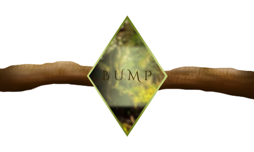 wild_woods_bump_by_angeldragonisa-dceu0ua.png