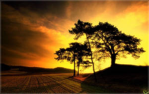 Sun goes down by calor-design