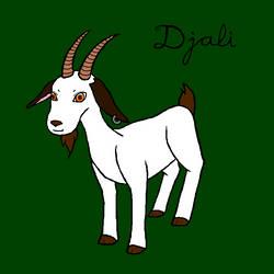 A Goat for Djali