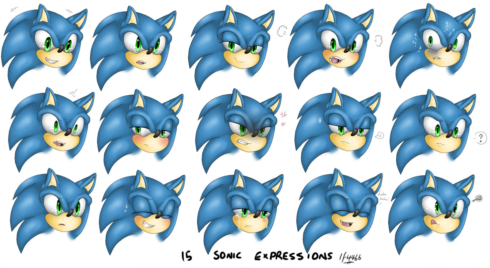 15 Sonic Expressions Study by BlueNeedle-Inu