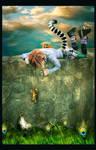 Miss Lemur by AusraKel
