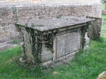 Sarcophagus 08: Ivy