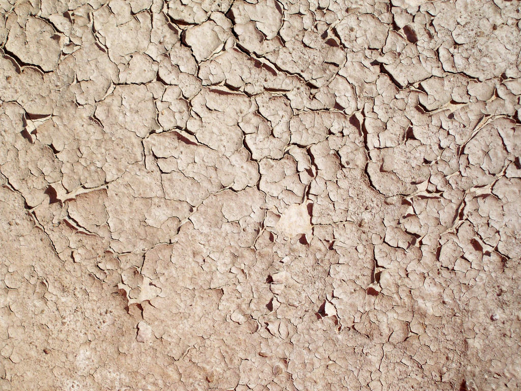 Cracked Mud 05 Texture by fuguestock