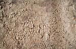 Cracked Mud 11 Texture