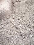 Cracked Mud 12 Texture: Gradient