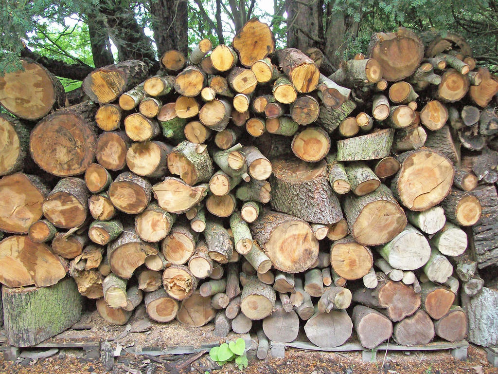 Wood Stack by fuguestock