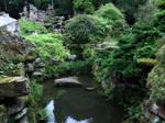 Forgotten Pond 01