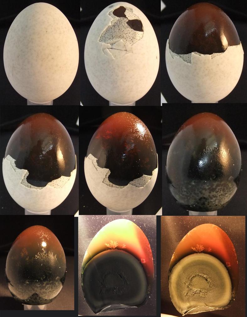 Thousand Year Egg Set 2 335192952 on 5 Food Groups
