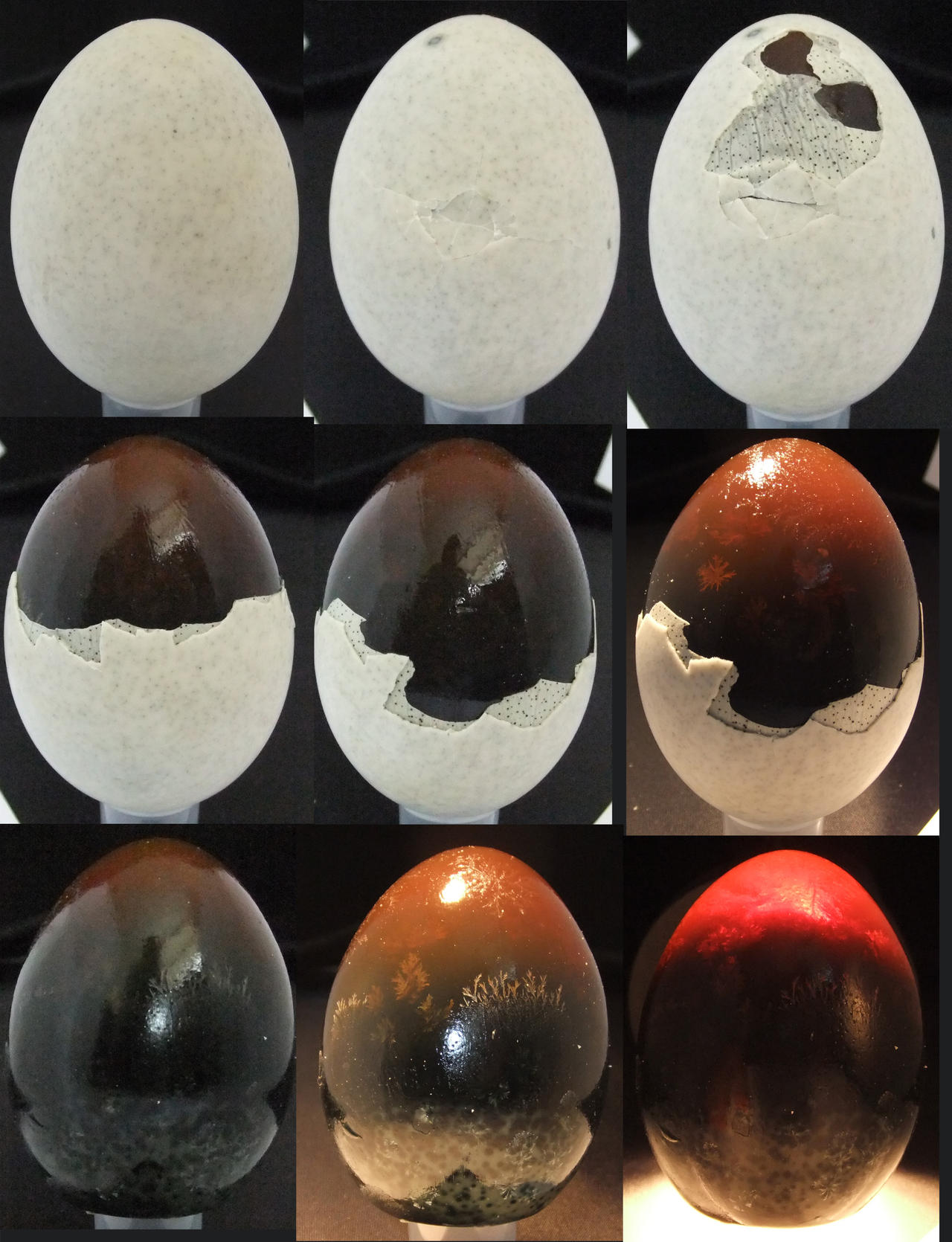 Thousand Year Egg (set 1) by fuguestock