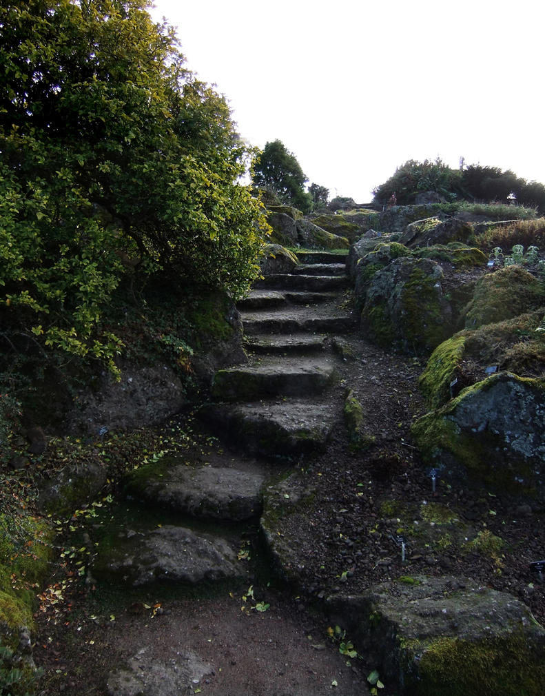 Stone Steps by fuguestock