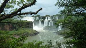 Jungle Falls 8