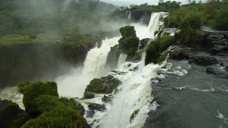 Jungle Falls 6