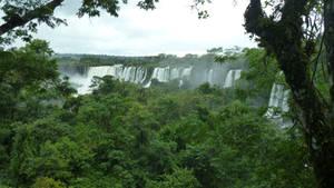 Jungle Falls 5