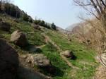 Mountain 02 - Trail