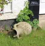 Forgotten Amphora 2