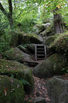 Fairy Forest 24 - Rocky Path