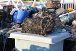 Lobster Traps 3