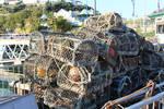 Lobster traps 2