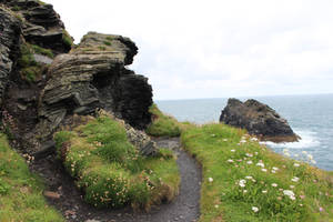 Rugged Coastline 05 - Path by fuguestock