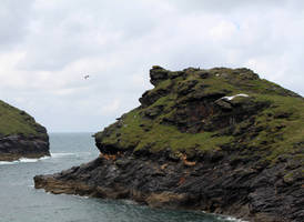 Rugged Coastline 01 by fuguestock