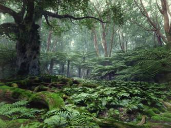 TreeFern Forest I by JeSSanchez