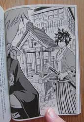 natsu gray fairy tail novel