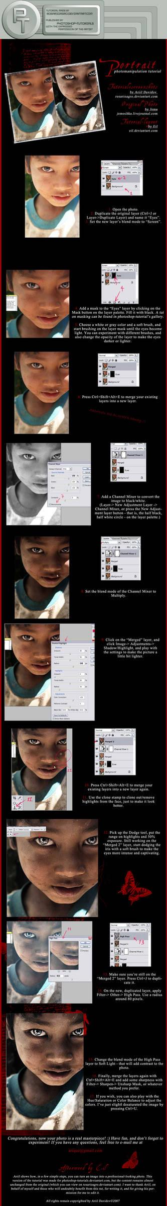 Portrait Manipulation -T-