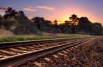 The Tracks II