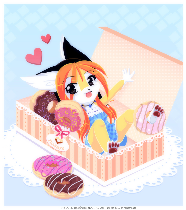 Donut Box by luna777