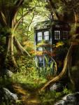 Tardis in the Woods