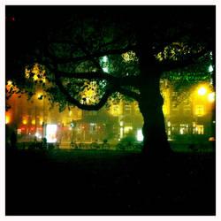 Tree of the city