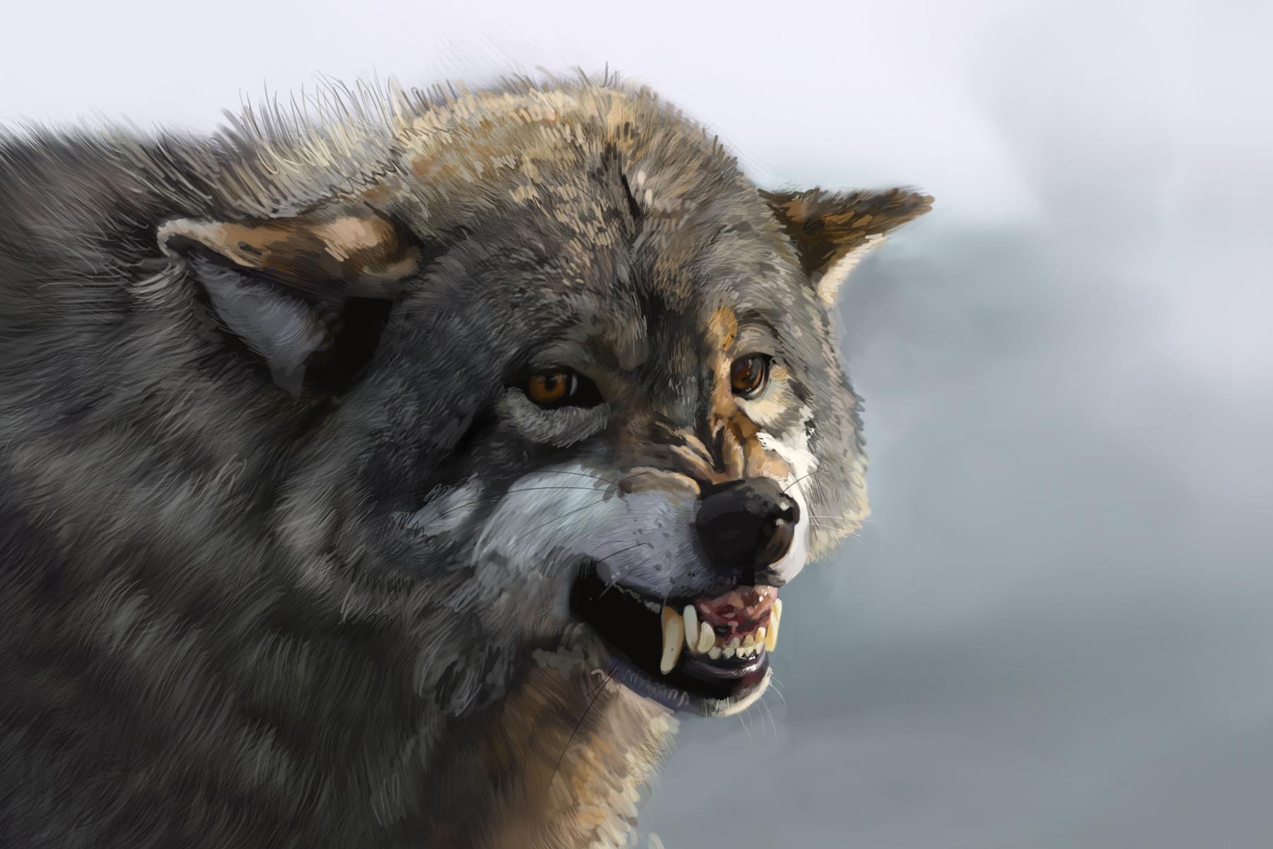 animal april challenge - study 11 by teyoliia