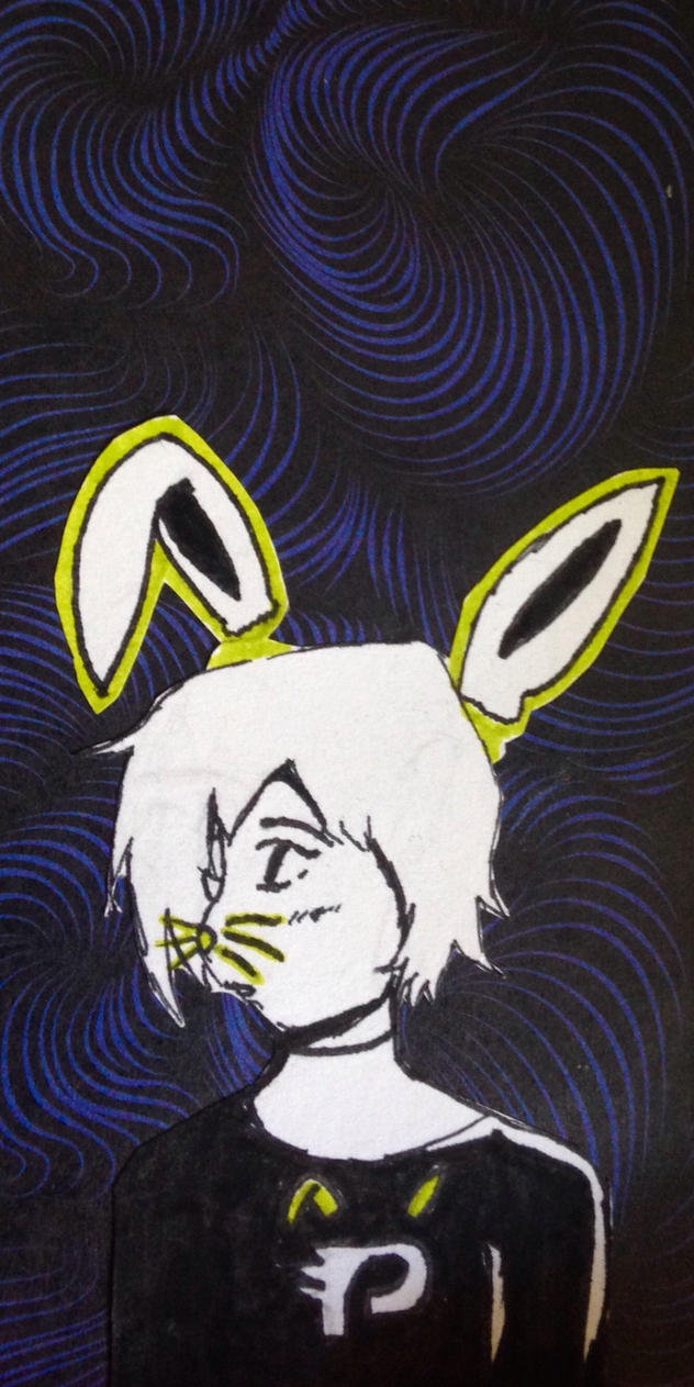Dust bunny- Danny Phantom  by briethebee