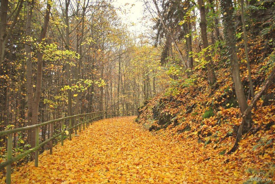 Autumn Land by Ibilicious