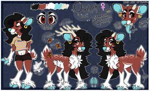 Owl Reference Sheet 2 0 1 9 by deerbite