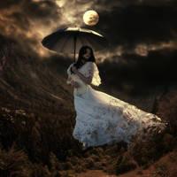 Moonlight by DeZikki