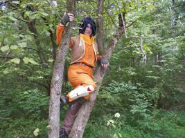 Ezra up a tree