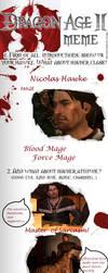 Dragon Age 2 MEME by LSDInkvizitor