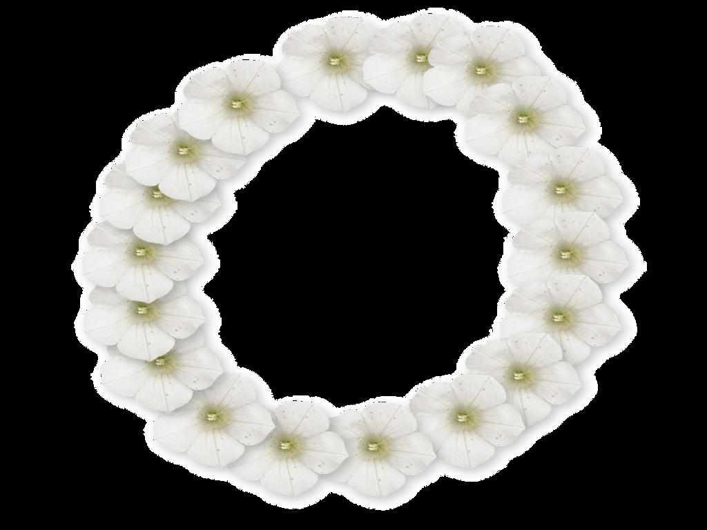 White Flower Frame By Supremechaos918 On Deviantart